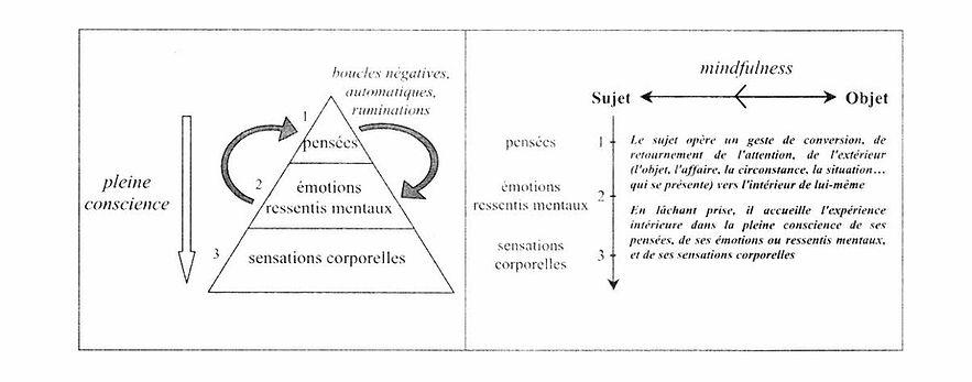 schema-automatisme-pense-emotion.jpg