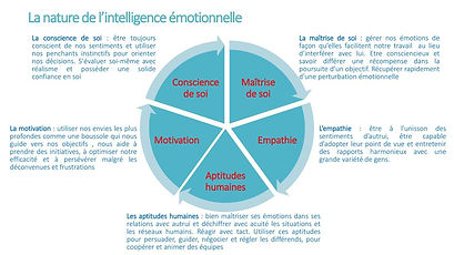 La+nature+de+l'intelligence+émotionnelle