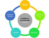Intelligence-emotionnelle-goleman-5-axes