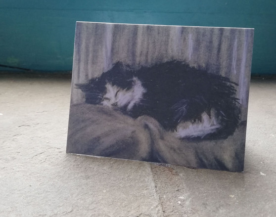 Darcy cat greeting card