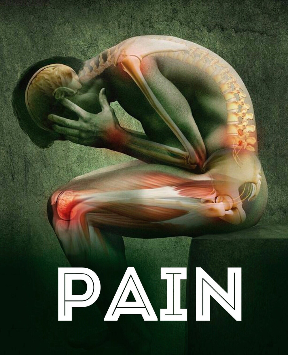 Pain and healing with plant medicine