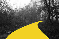 Yellow series road small.jpg