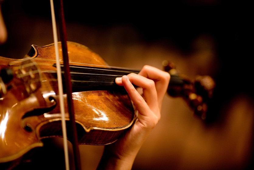 violin-new.jpg