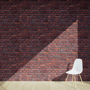 Bricks Red