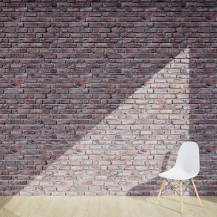 Bricks Clean