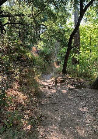 Jesusita Trail