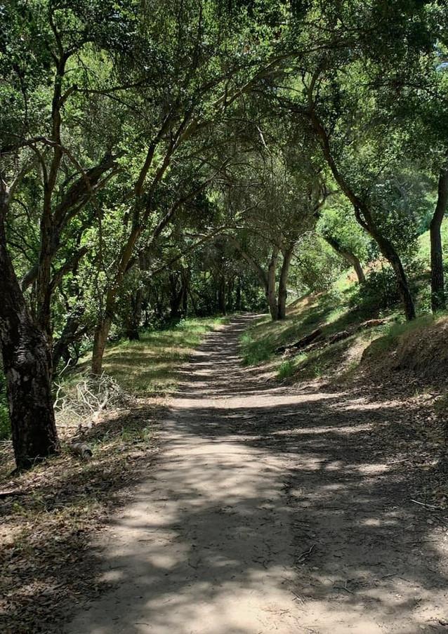 Santa Barbara Westside