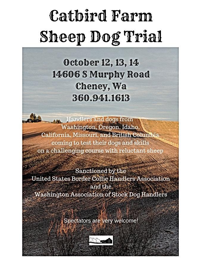 Catbird Farm Sheep Dog Trial.jpg