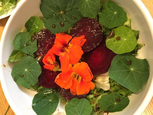 Beetroot and Nasturtium Salad