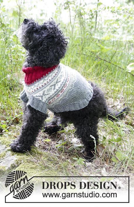 Patrón de Punto   Jersey para perro con punto jacquard