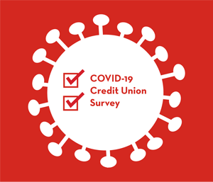 CDFI Credit Unions Have Implemented Strategies to Meet the Financial Needs of Members