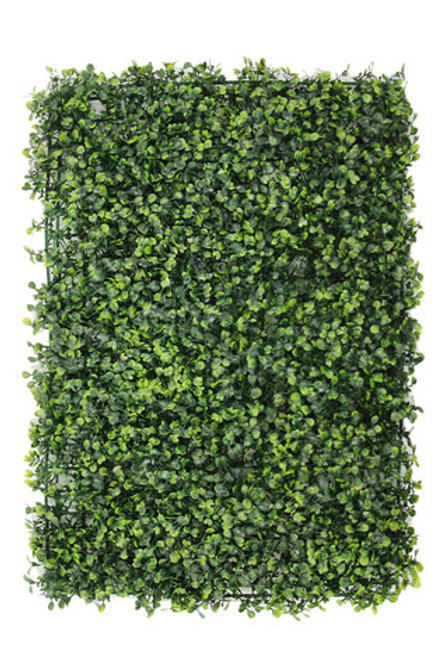 Green Buxus Hedge Wall