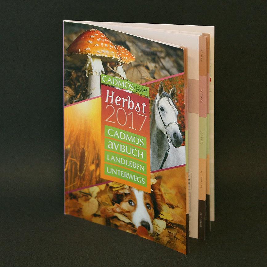 Print, Flyer, Magazin, Werbeagentur r2 Mediendesign, Verden