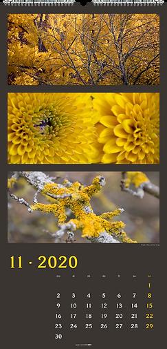 Kalendergestaltung, Die Farben der Natur 2020 Kalender, Tina Herzig, Horst Herzig, Weingarten, Werbeagentur r2 Mediendesign, Verden