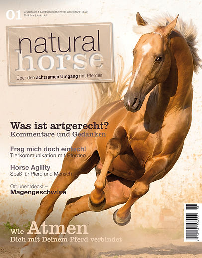 Magazin Gestaltung, Natural Horse, Über den achtsamen Umgang mit Pferden, Werbeagentur r2 Ravenstein, Verden