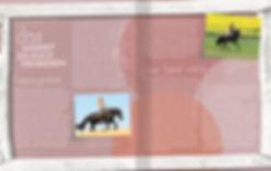 Magazin Gestaltung, Jenny und Mambo, Ein Traum wird wahr, Cadmos Home Stories, Werbeagentur r2 Ravenstein, Verden