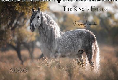 Kalender The King´s Horses 2020, Sonderkalender der Edition Boiselle