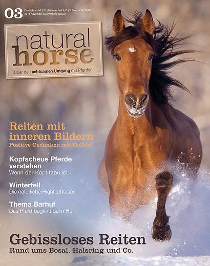 Magazin Gestaltung, Natural Horse, Über den achtsamen Umgang mit Pferden, GWerbeagentur r2 Ravenstein, Verden