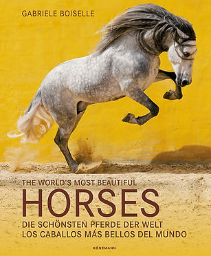 Buch The World´s most beautiful Horses