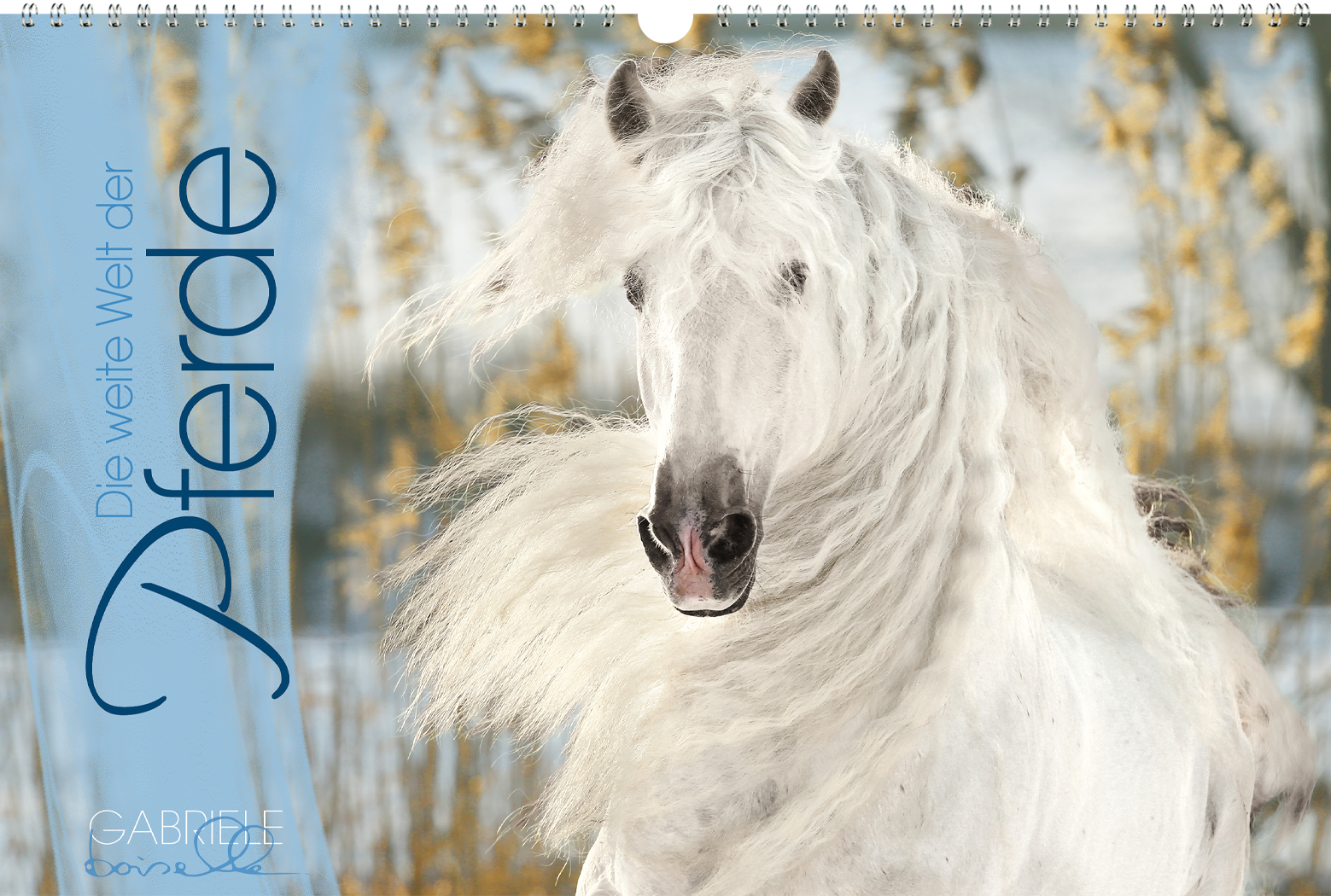 """""""Die weite Welt der Pferde"""" Panoramakalender"""