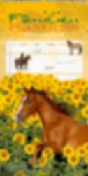 Familienplaner-Pferdeglueck-2020-1.png