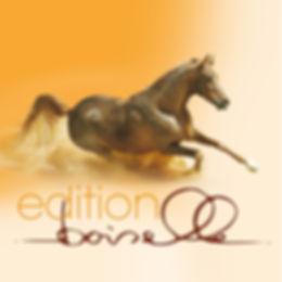 Print, Logodesign, Edition Boiselle, Werbeagentur r2 Mediendesign, Verden