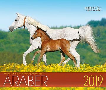 Kalender Edle Arabe 2019