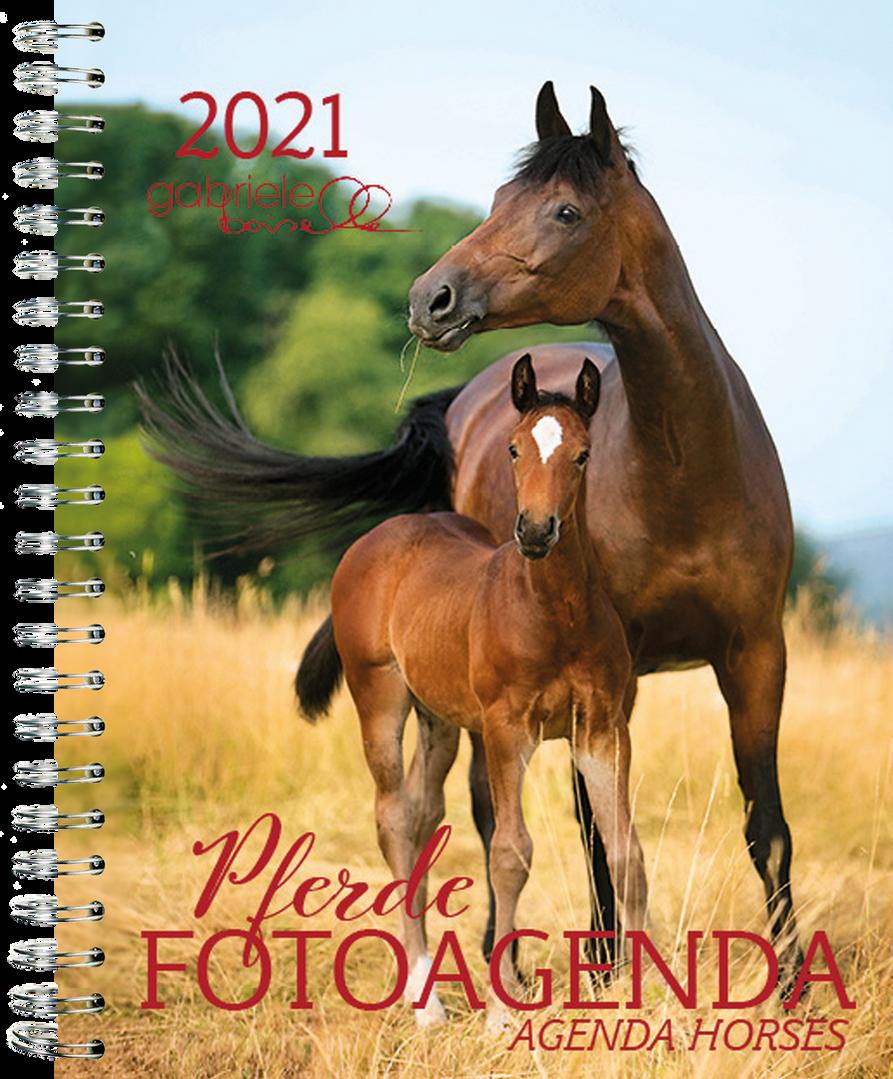 Fotoagenda Pferd 2021