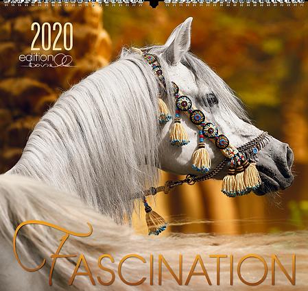 Kalender Fascination 2020