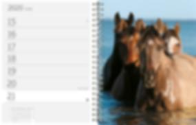 Pferd Fotoagenda 2020 der Edition Boiselle