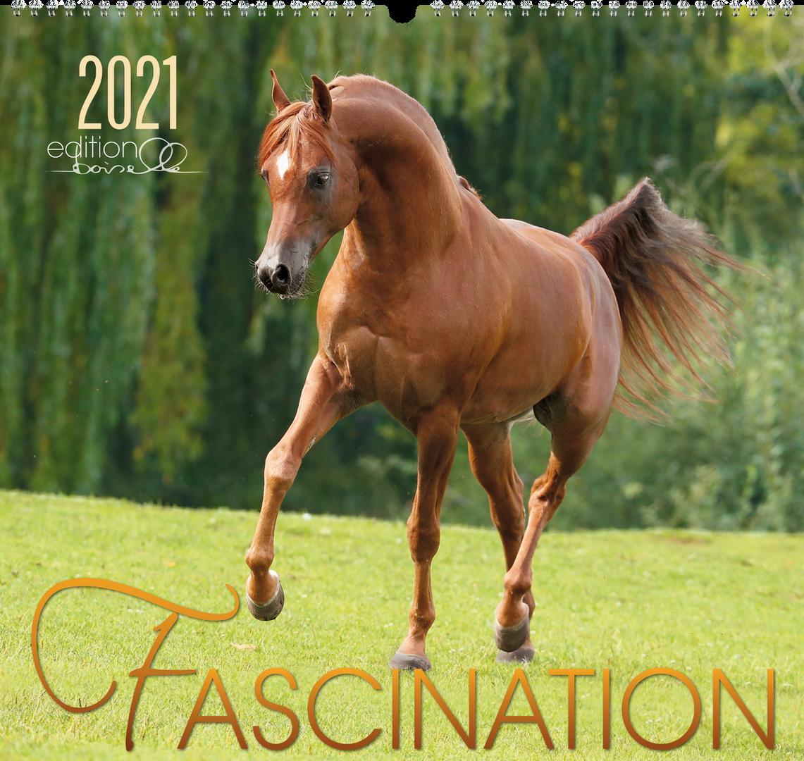 Kalender Fascination 2021