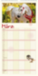 Familienplaner-Pferdeglueck-2020-7.png