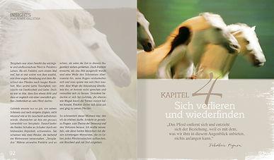 Buchgestaltung, Die Kraft der Verbindung, Magali Delgado und Frédéric Pignon, WuWei Verlag, Werbeagentur r2 Ravenstein, Verden
