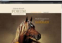 Webdesign, Forum Pferdefotografie, Gabriele Boiselle, Werbeagentur r2 Mediendesign, Verden