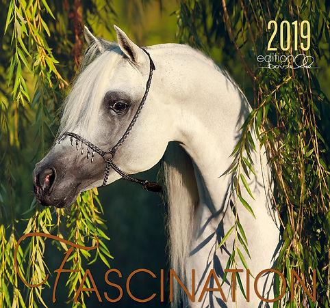 Kalender Fascination 2019