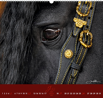 Kalendergestaltung, Friesen 2020 Kalender, Edition Boiselle, Werbeagentur r2 Mediendesign, Verden