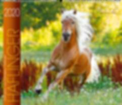 Kalender Haflinger 2020 der Edition Boiselle
