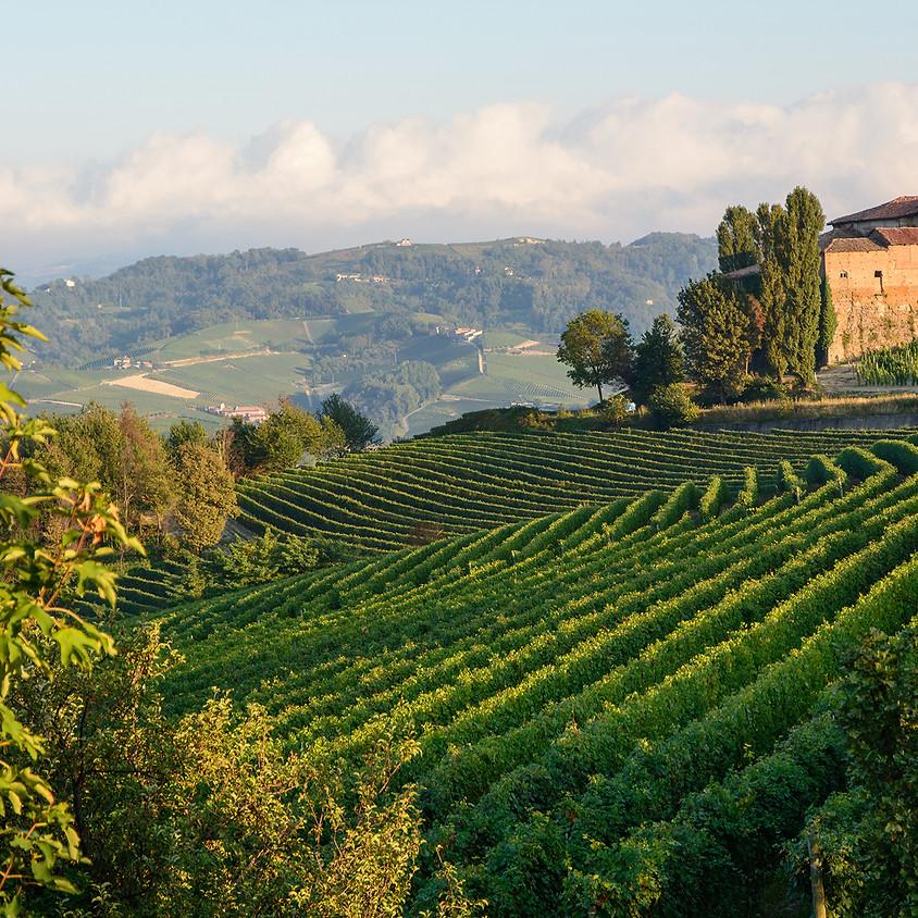 Weinreise Piemont