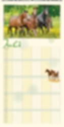 Familienplaner-Pferdeglueck-2020-15.png