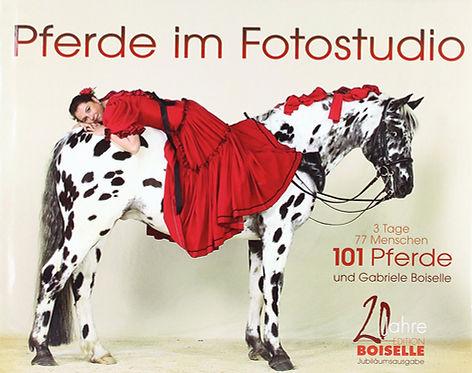 Buch - Pferde im Fotostudio