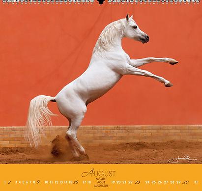 Kalendergestaltung, Fascination 2020 Kalender, Edition Boiselle, Werbeagentur r2 Mediendesign, Verden