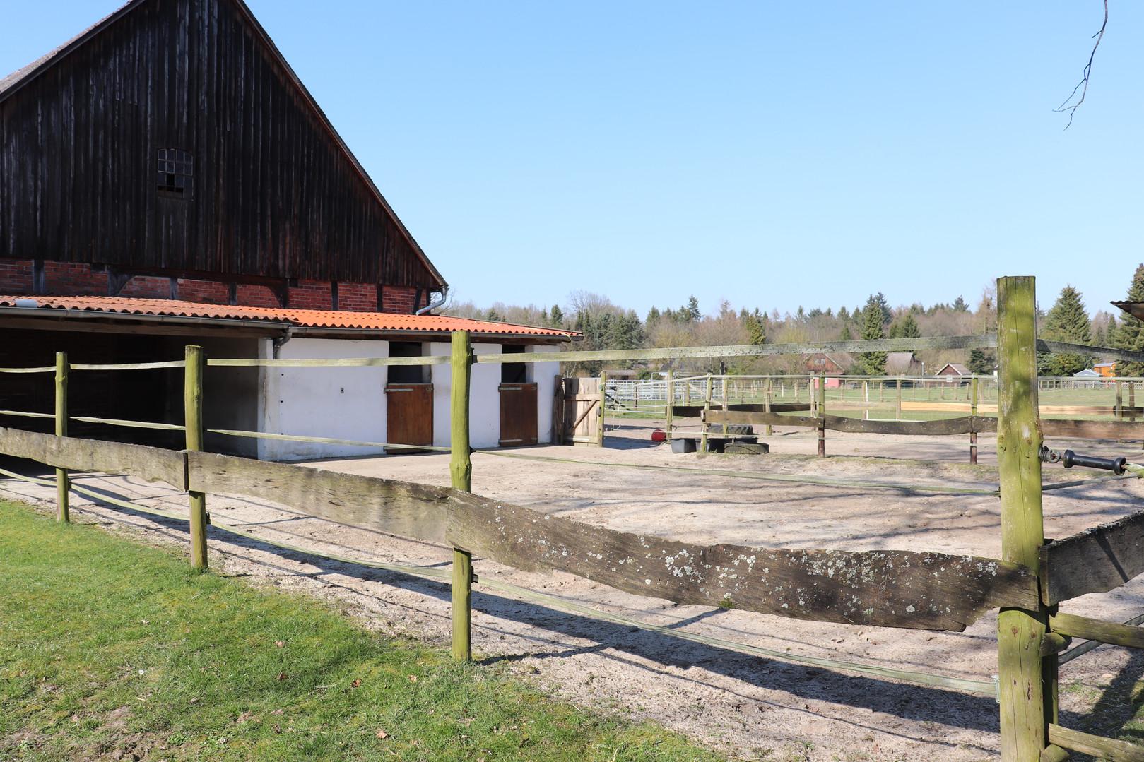Dennhornshof Gastpferde