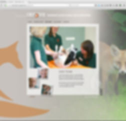 Webdesign, Werbeagentur r2 Mediendesign, Verden
