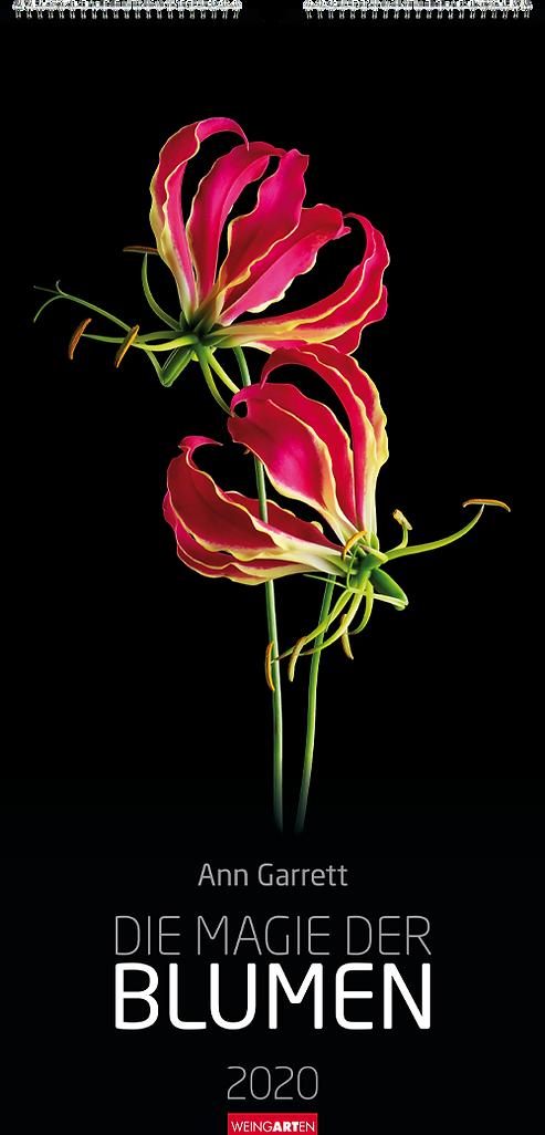 Kalendergestaltung, Die Magie der Blumen 2020 Kalender, Ann Garrett, Weingarten, Werbeagentur r2 Mediendesign, Verden