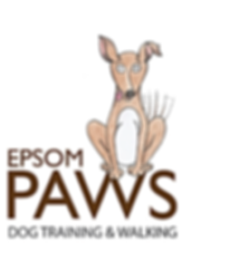 Epsom Paws dog training and walking - Epsom