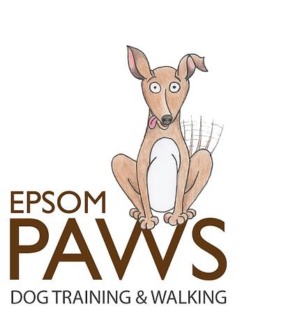 Epsom Paws dog training and walking - Epsom