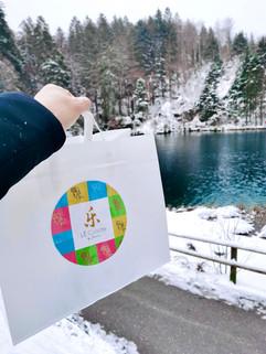 bag in nature.jpg