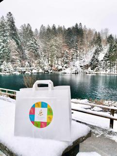 bag winter view.jpg
