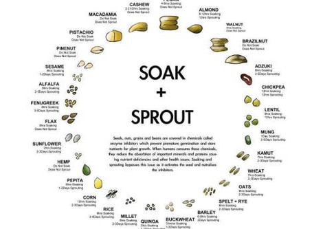 SOAK & SPROUT CHART