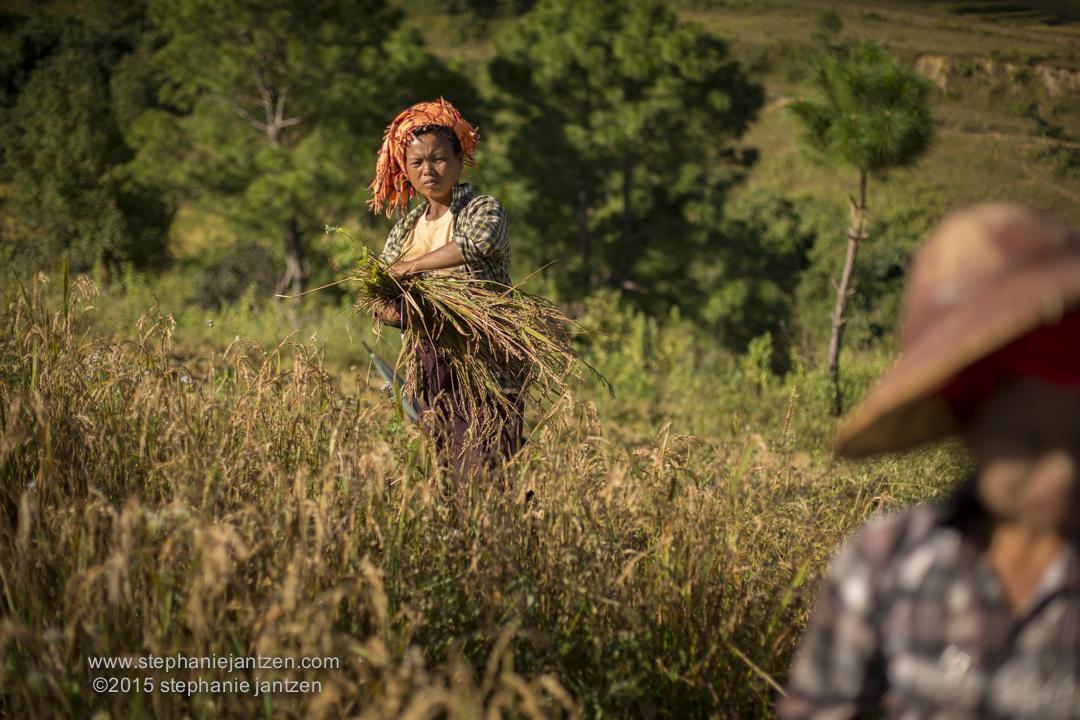 MYANMAR_kalaw-194